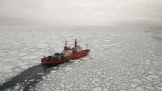 Una lengua de hielo –13.01.2020 Ushuaia, Boat, Research Projects, Ice, Boats, Islands, Dinghy, Ship