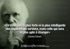 Darwin, so proud I knew what that said. Its not the intelligence of a species that ensures survival, it's their ability to adapt to change. Brainy Quotes, My Life Quotes, Charles Darwin, Film Quotes, Quotable Quotes, French Proverbs, Honest Quotes, Bad Life, Quotation Marks