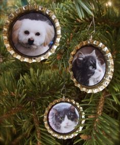 Glossy Photo Bottle Cap Ornaments - I could make one for each grandchild then connect them to a Ribbon band. Decorated at the top some how, also a date?