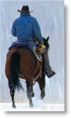 Cowboy symbols represent a spirit of our self-reliance. Symbols of cowboy hats, spurs and horses convey the culture of hard work, horsemanship & strength. Cowboys Today, Real Cowboys, Cowboys And Indians, Cowgirl Pictures, Farm Pictures, Horse Tail, Pinterest Photos, Cowboy And Cowgirl, Old Farm