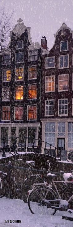 Winter Night in Amsterdam HD Wallpaper Best Countries To Visit, Countries Around The World, Cool Countries, Around The Worlds, I Amsterdam, Amsterdam Travel, Hd Wallpaper, Wallpapers, Beautiful World