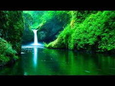 Relaxing Music,Stress Relief,Shamanic Music,Pan Flute ☯