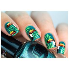 Toucan Nails ! ❤️ #notd #nails #nailpolish #polish #cirque #cirquecolors #latropicale #juicycollection #nailart #stamping #moyoulondon #toucannails #summer #summernails #tropicalnails #nailit #nailitdaily #dubaiblogger #dubaiigers #bbloggers #didoline #didolinesnails