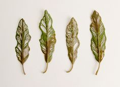 Hillary Fayle, a student of embroidery, has created a series of leaves that have been cut and embroidered with exquisite and delicate decorative patterns. Tree Leaves, Plant Leaves, Felt Leaves, Leave Art, Embroidery Leaf, Embroidered Leaves, Colossal Art, Painted Leaves, Arte Floral