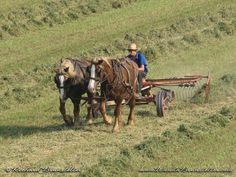 This photo was taken in Lancaster County, PA. It was fun to watch this young Amish man working the field.