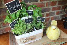Utensil Caddy Herb Garden