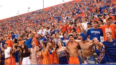 FSU hate week has begun!  Check out what really goes on in a Gator's mind during FSU hate week.