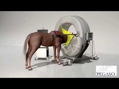 "EQUINE CT MACHINE WILL ""CHANGE THE FACE OF VETERINARY MEDICINE"" Rendering of the Pegaso equine CT scanner, developed by Epica Medical Innovations."