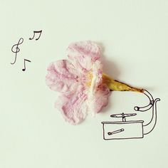 Artist Javier Perez creates inventive sketches from everyday objects *** flower petal gramophone!