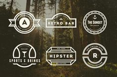 14 Vintage Logos & Badges by DesignDistrict on @creativemarket