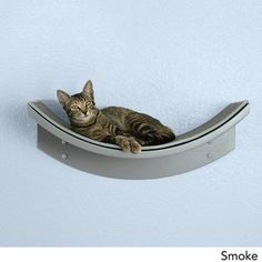 Shop for Lotus Leaf Cat Shelf from The Refined Feline. Get free delivery On EVERYTHING* Overstock - Your Online Cat Supplies Store! Modern Cat Furniture, Pet Furniture, Cat Wall Shelves, Wood Shelf, Cat Perch, Cat Towers, Wood Cat, Cat Playground, Cat Condo