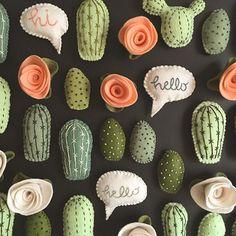Close-up cacti #lunabeehive #killercacti #cactusmagazine