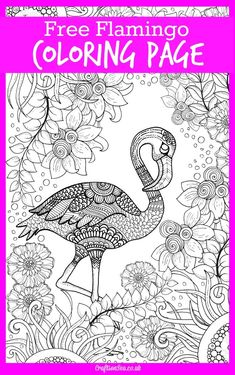 Free Flamingo Coloring Page for Adults