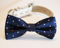 Navy Dog Bow Tie, Polka dots bow, Pet accessory, Navy and Lavender wedding