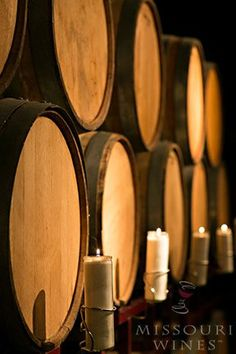 Wine Barrels: Function and Flavor | MO Wine White Wine, Red Wine, Wine Terms, Stainless Steel Tanks, Wine Education, Wine Tasting, Wines, Wine Barrels, Missouri