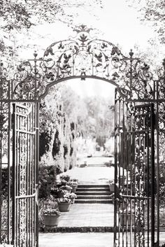Italian Garden Photography Il Giardino Nature