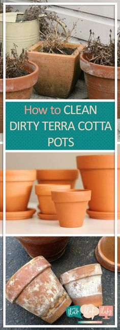 Quick To Build Moveable Greenhouse Options How To Clean Dirty Terracotta Pots Terra Cotta Pots, Cleaning Dirty Terra Cotta Pots, Cleaning Hacks, Cleaning Tips, Cleaning Tips And Tricks Clay Flower Pots, Terracotta Flower Pots, Ceramic Flower Pots, Tips And Tricks, Clean Pots, Outdoor Pots, Clay Pot Crafts, Terracota, Organic Gardening Tips