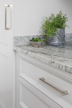 The beautiful polished Nickel hardware is complimented by the Little Greene French Grey painted cabinetry and marries perfectly with the busy greys within the Kinawa White worktops. Little Greene, White Granite, Steam Valve, French Grey, Larder, Kitchen Handles, Grey Paint, Aga, Polished Nickel