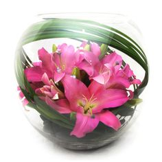 Pink Delight - our bestselling fishbowl arrangement of oriental lilies displayed with elegant foliage, smooth river pebbles, and spear grass.