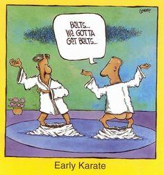 Gotta get karate belts - funny