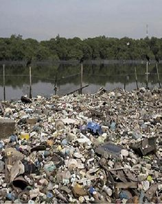 """As Rio fails to keep its promise to clean up raw sewage & garbage from rivers & bay for the Olympics, contestants order virus testing of waters. """"..the scale of the filth is staggering; the stench overwhelming.."""" http://www.cbc.ca/news/world/rio-olympics-sewage-1.3704804 - Despite an uncaring population, new to Rio is a small caring group, 'Guardians of the River.' http://www.cbc.ca/news/world/guardians-of-the-river-make-tiny-dent-in-rio-s-unrelenting-pollution-1.3714213"""