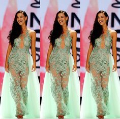 Demi-Leigh Nel-Peters wore this custom mint green illusion embroidered gown designed by Anel Botha when she won the title of Miss South Africa 2017! She will compete for the title of Miss Universe 2017.  The Color  I love the simplicity of an illusion embroidered gown. It makes the overall look emanate a sense of freshness and regality.  I especially love the unique color of this gown. Mint green is an immensely unpopular color choice for evening gowns and I like that Demi-Leigh took the… Pageant Gowns, Prom Dresses, Formal Dresses, Hair Color Dark, Dark Hair, Demi Leigh Nel Peters, Africa Dress, Lee Ann, Tim Tebow