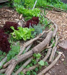 Alternative Materials for raised beds. Branches -- One of five ideas mentioned in this article at re-nest.