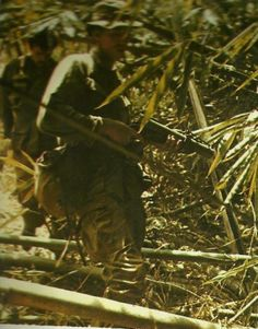 """Walking point in jungle patrol."" LRRPs Vietnam War"