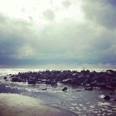 Rustplaats meeuwen aan zee #Ameland