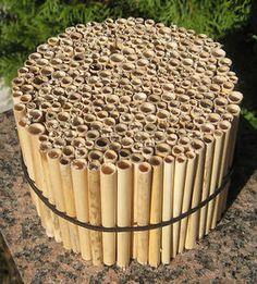 Insektenhotel Bruthülsen Brutröhren Niströhren Wildbienen Insekten Nisthilfen | eBay Bug Hotel, Hotel S, Mason Bees, Bee House, Garden Bugs, Hotel California, Bee Keeping, Clematis, Bird Houses