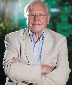David Attenborough to be honoured by Queen's University Belfast