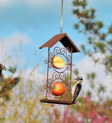 Fresh Fruit Feeders In Two Sizes  On Sale - Save up to 34%  $9.99 - $12.99