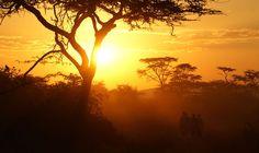 the amazing sunsets one gets to experience everyday. wonderful paintings of nature #beautifulUganda