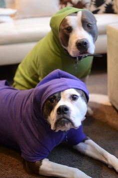 """Mom, these clothes are embarrassing us!"" :)"
