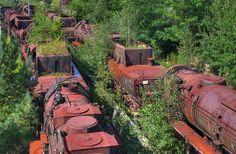 A Steam Train Graveyard in Brandenburg, Germany