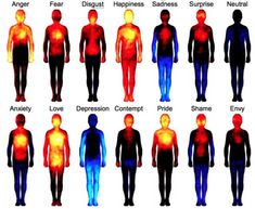 Research Mapping Human Emotions Shows Strong Mind Body Connection - The Mind Unleashed______This is so awesome! that our body shows our feelings! Les Chakras, Heat Map, Different Emotions, Body Love, Human Emotions, Negative Emotions, Negative Thoughts, Emotions List, Our Body