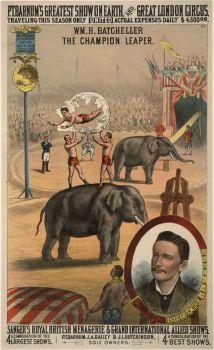 P.T.Barnum Circus Poster
