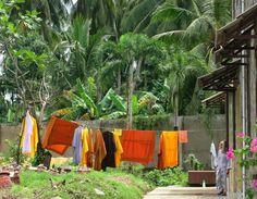 viaggiando (meno): Anche i monaci buddisti nel loro piccolo fanno il ...