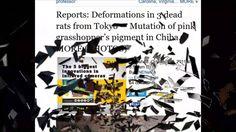 Fukushima Meltdown  Brings Nuclear Spring Mutaions May 2nd 2016