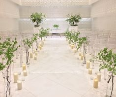 #himejimonolith#novarese #vressetrose#wedding #white#chapel #flowew #bridal#結婚準備 #姫路モノリス#ノバレーゼ#ブレスエットロゼ #ウェディング #チャペル#ナチュラル # ブライダル#教会#バージンロード#挙式#ホワイト#グリーン#小花#説教台#式台##koriyamamonolith#novarese #vressetrose#wedding #white#chapel #flowew #bridal#結婚準備 #郡山モノリス#ノバレーゼ#ブレスエットロゼ #ウェディング #チャペル#ナチュラル # ブライダル#教会#バージンロード#挙式#ホワイト#グリーン#小花#説教台#式台#枝 Ideas Para, Table Decorations, Wedding, Image, Home Decor, Valentines Day Weddings, Decoration Home, Room Decor, Weddings