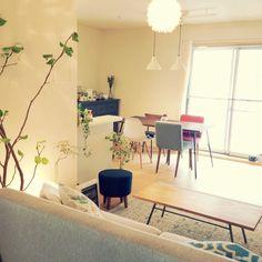 Tshouseさんの、リビング,植物,カフェ風,北欧,おうちカフェ,のお部屋写真