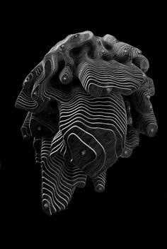 Generative design functions as visual catalogue concentrating on parametric architecture and generative design. Mind The Gap, Code Art, Digital Fabrication, 3d Studio, Generative Art, 3d Prints, Image Photography, Textures Patterns, Sculpture Art