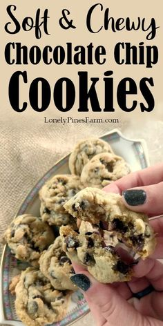 Everybody needs a delicious, reliable chocolate chip cookie in their arsenal. These perfectly soft cookies are years in the making and you won't be disappointed. So amazingly chewy Cookie Recipes, Real Food Recipes, Dessert Recipes, Chip Cookie Recipe, Best Chocolate Chip Cookies Recipe, Gooey Cookies, Yummy Cookies, Recipe From Scratch, Treats
