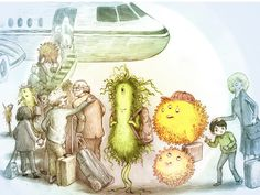 HOW TO STAY HEALTHY IN FLIGHT Suspicious travel companions: Bacteria can survive for days on surfaces inside a plane. But that doesn't mean you have to take these critters home with you