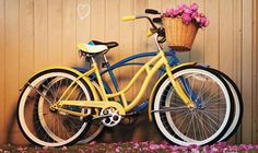 Registry idea! What could be better than his and hers bikes?