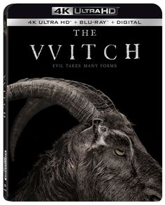 The VVitch:A New-England Folktale (2015) Scary Movies, Great Movies, Horror Movies, The Vvitch, Incredible Film, 4k Pictures, The Royal Tenenbaums, No Mans Land, The Exorcist