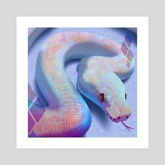 Leucistic ball python, (Eden west) Lauren W Pretty Snakes, Cool Snakes, Colorful Snakes, Beautiful Snakes, Les Reptiles, Cute Reptiles, Beautiful Creatures, Animals Beautiful, Cute Baby Animals