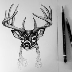 "Kris513: ""This deer design reminds me so much of @Carl_Huebsch :) )"