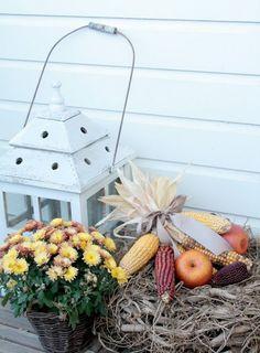 dream gardens: Pestrofarebný jesenný balkón