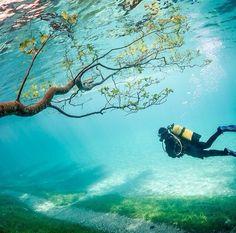 Green Lake in Tragöss, Austria